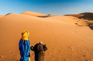 Camel ride HAR1