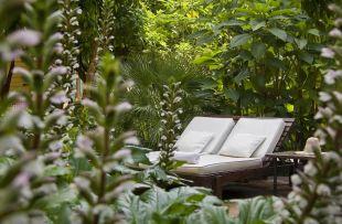 Jardins de la Medina hot web4