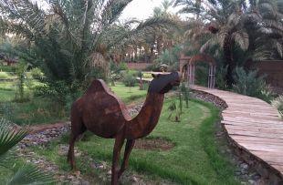Riad Lamane AH4
