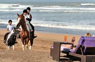 horse ride pullman eljadida web